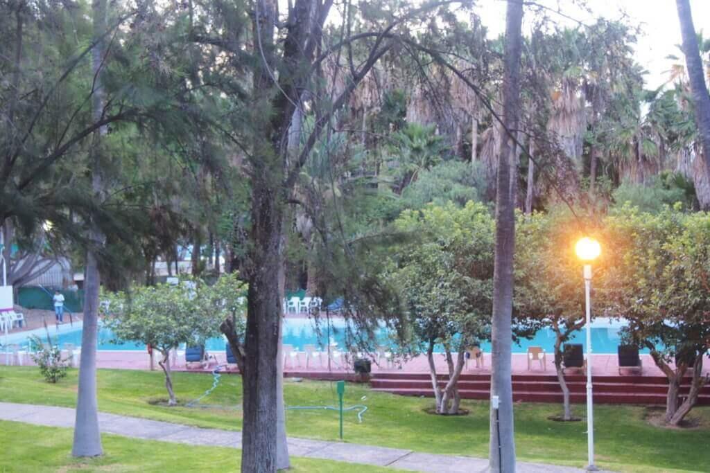 Large Pool1