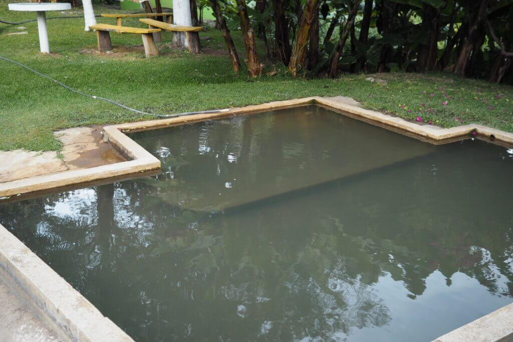 Forth Pool