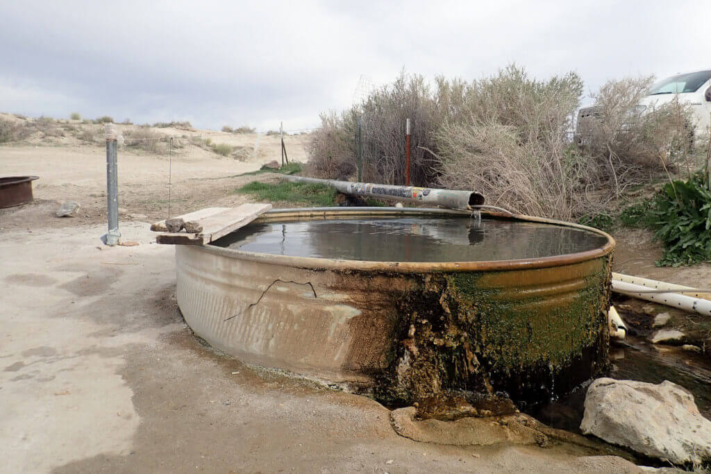 Lower Pool 1