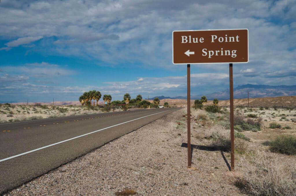 Blue Point Spring